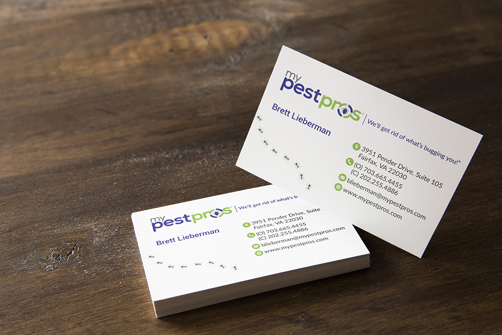 Business Card Design for My Pest Pros